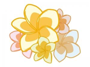 たくさんのカラフルなプルメリアの花びらのイラスト