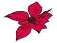 赤いポインセチアの花びらのイラスト