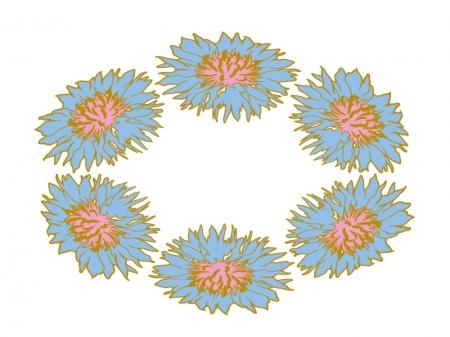 青いヤグルマギクの花輪のイラスト