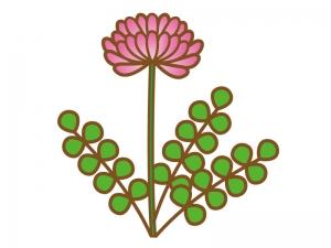 ピンク色のレンゲソウ(蓮華草)のイラスト