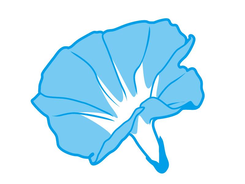 青色の朝顔の花のイラスト