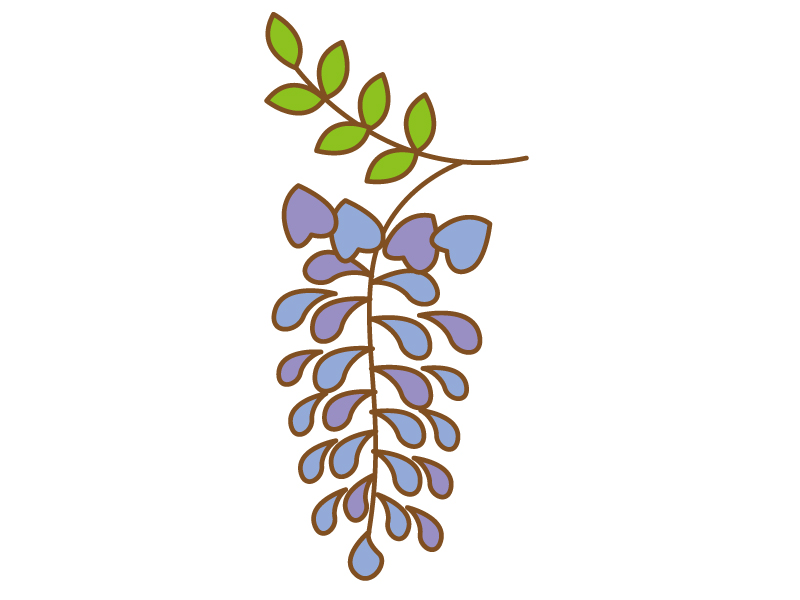 藤の花のイラスト