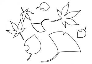 イチョウ・モミジなど落ち葉のぬりえ(線画)イラスト素材