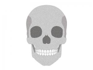 頭蓋骨のイラスト