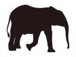 ゾウのシルエット