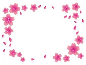 桜のフレーム・飾り枠素材04