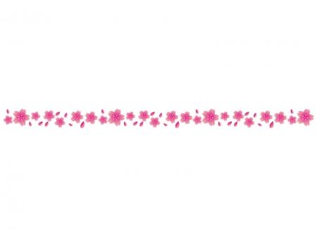 桜の花びらの線・ライン素材03