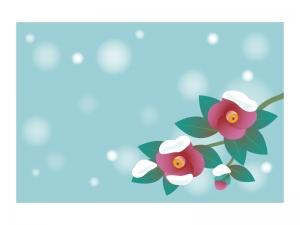 文字無し・寒椿の寒中見舞いテンプレートイラスト01