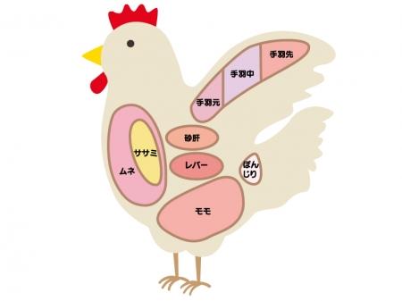 「鶏肉 フリー」の画像検索結果