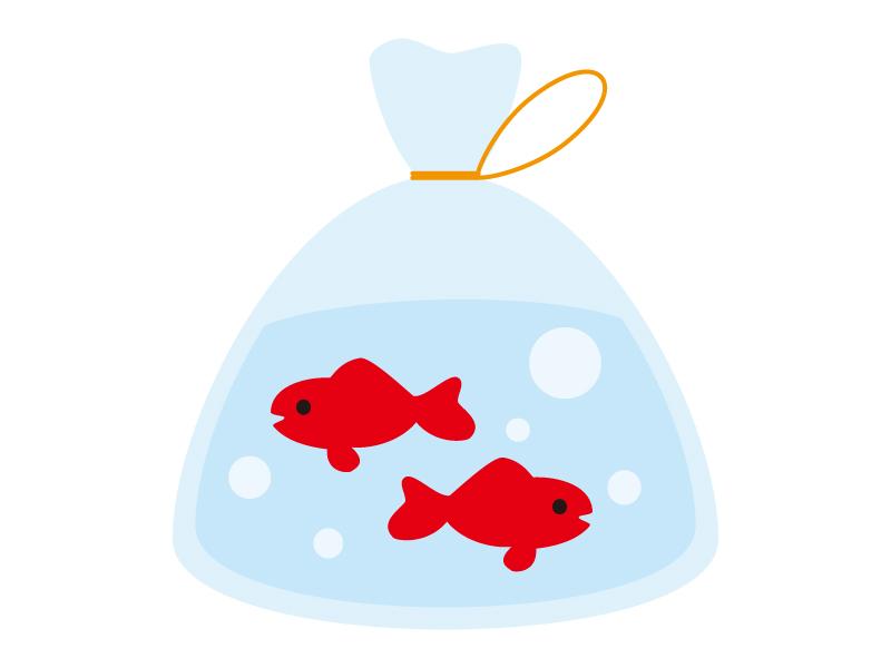 夏祭り・金魚のイラスト