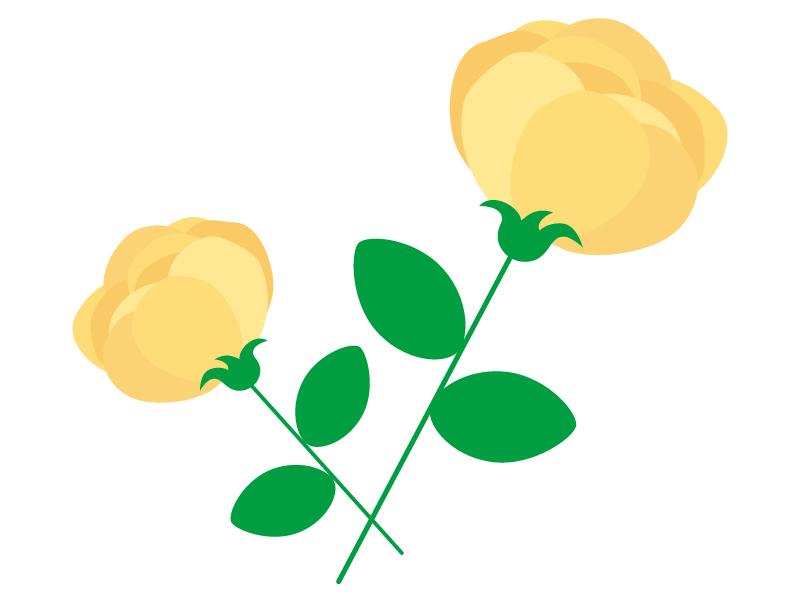 黄色い二輪のバラのイラスト