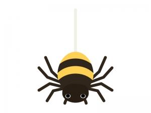 かわいい蜘蛛のイラスト