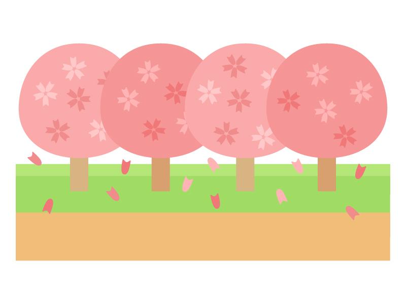 桜並木のイラスト02