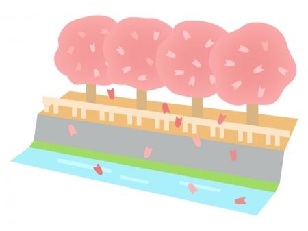 川と桜並木のイラスト