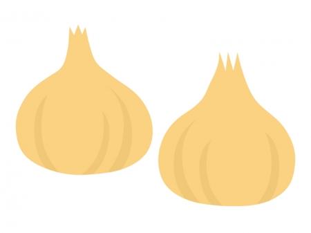 玉ねぎのイラスト02