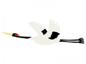 飛んでいる鶴のイラスト