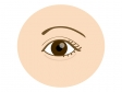 目・瞳のイラスト