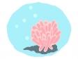 サンゴ・珊瑚のイラスト