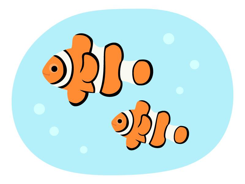 熱帯魚・クマノミのイラスト