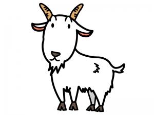 かわいい山羊のイラスト02