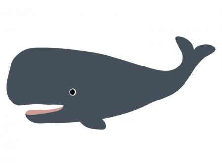 クジラ(マッコウクジラ)のイラスト