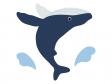 ザトウクジラのイラスト