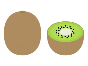 キウイフルーツのイラスト