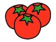 トマトのイラスト02