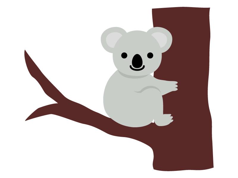 木につかまっているコアラのイラスト