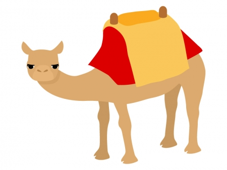 観光のラクダのイラスト