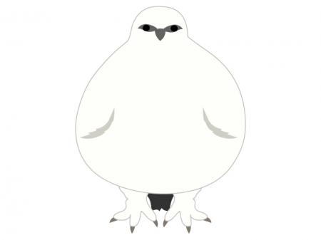 冬毛の雷鳥のイラスト