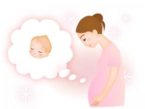 お腹の赤ちゃんを想像する妊婦さんのイラスト