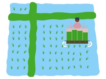 機械で田植えのイラスト