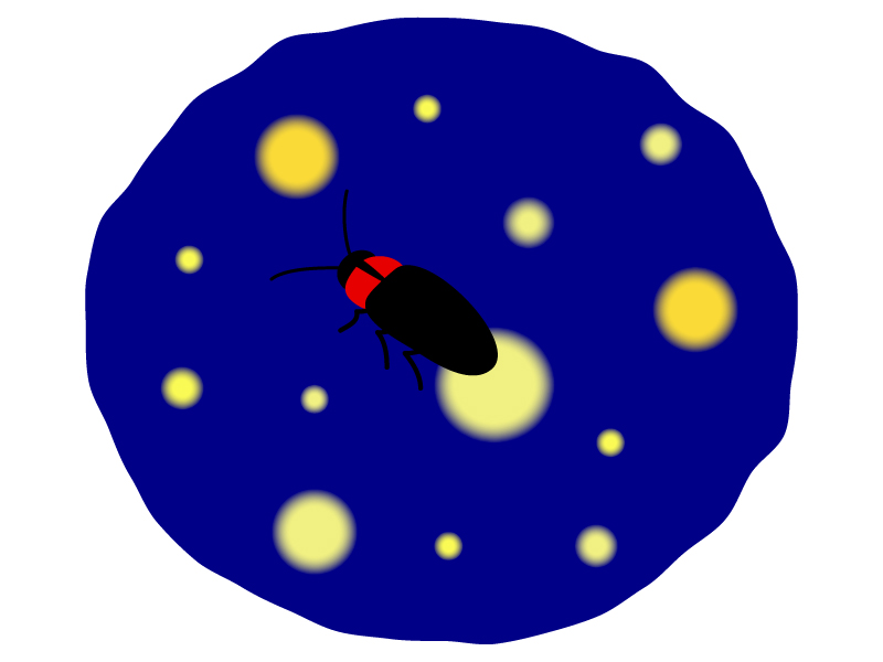 夜にホタルが飛んでいるイラスト02