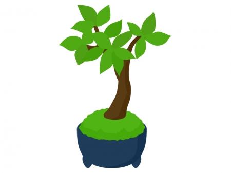 盆栽のイラスト02