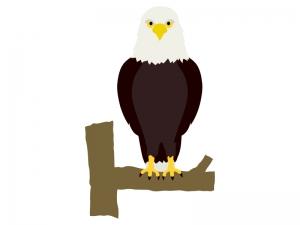 鷲のイラスト