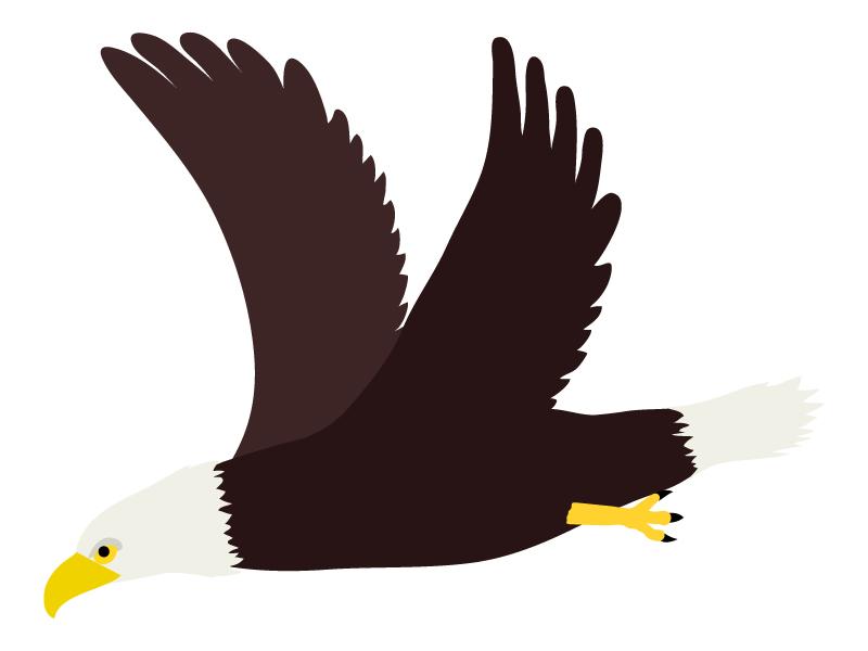 飛んでいる鷲のイラスト