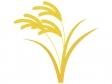 黄金色の稲穂のイラスト