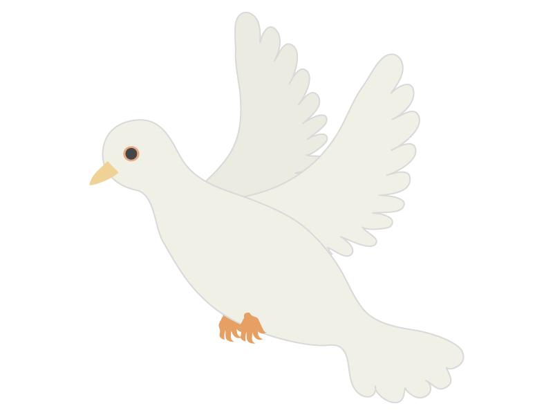 白い鳩のイラスト