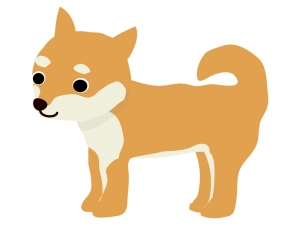 柴犬のイラスト