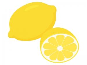 レモンのイラスト03