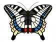 アゲハ蝶のイラスト02