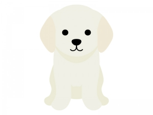 ゴールデンレトリバーの子犬のイラスト