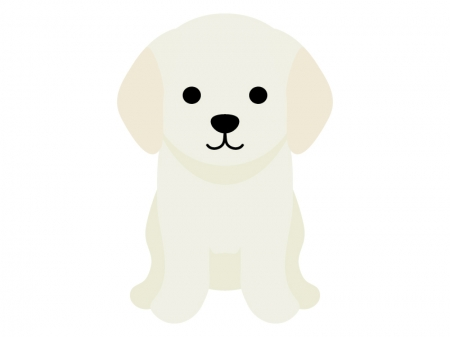 ゴールデンレトリバーの子犬のイラスト