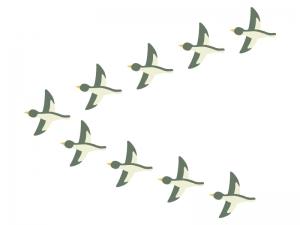 渡り鳥のイラスト