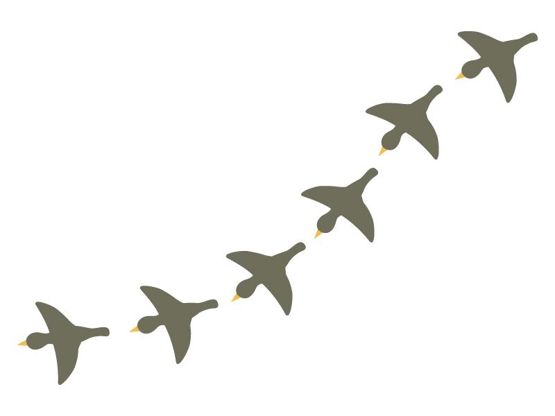 渡り鳥のイラスト02
