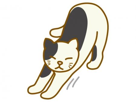 背伸びをしている猫のイラスト02