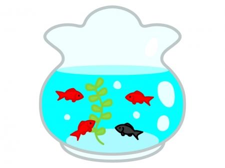 金魚鉢と金魚のイラスト