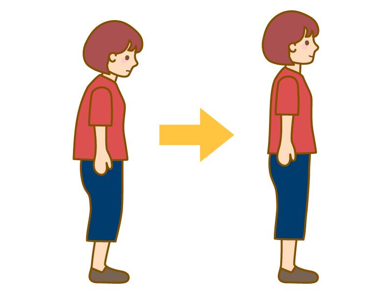 猫背と背筋が真っ直ぐな女性のイラスト