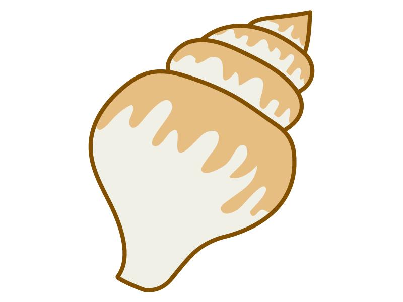 バイ貝のイラスト